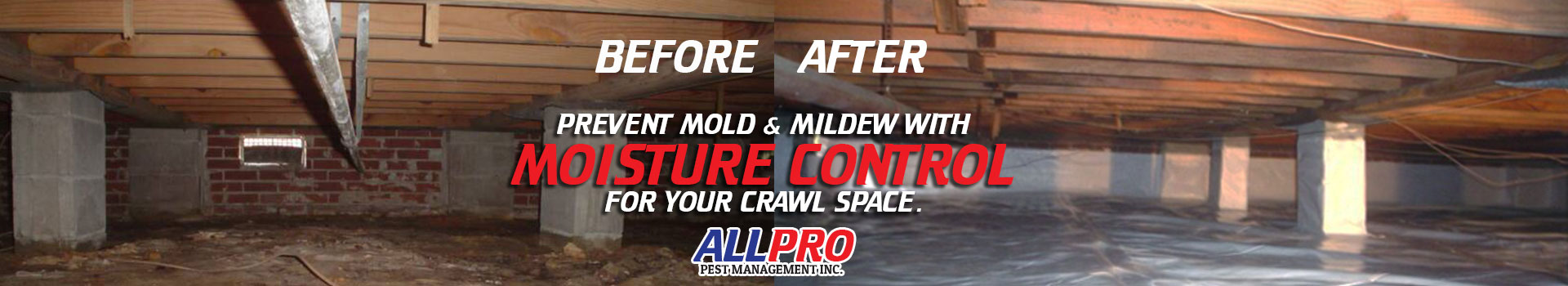 moisture-control-before-after